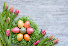 Färben Sie Eier im Nest mit Tulpen auf hölzernem Hintergrund der Weinlese Lizenzfreie Stockfotos