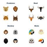 Färben Sie gesetzte Ikonen der Ebene von Tieren nach Art auf weißem Hintergrund Lizenzfreies Stockbild