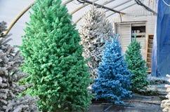 Färben Sie gespritzte Weihnachtsbäume stockbild