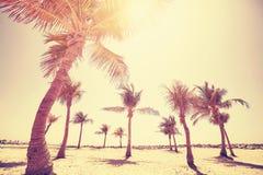 Färben Sie getontes Bild des goldenen Sonnenuntergangs auf einem Strand Lizenzfreie Stockfotografie