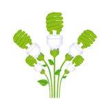 färben Sie Hintergrund mit Satz der gewundenen Leuchtstofflampe mit Stamm und Blättern lizenzfreie abbildung