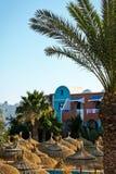 Färben Sie Sonnenschutz und Palmen im Hotel gelb Stockfotografie