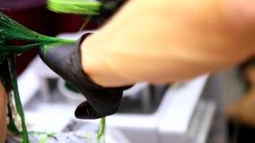 Färbendes Haar des Berufsfriseurs Mehrfarben mit dem Ausdehnen des Farbtons Leuchtstoffbeflecken stock footage