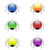Färbt Spinnen Stockfoto