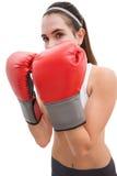Färdig brunett i boxninghandskar Royaltyfria Bilder