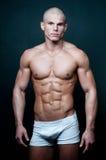 Färdig manlig modell Royaltyfri Foto