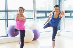 Färdiga kvinnor som gör den balansera yogan, poserar i konditionstudio Royaltyfria Bilder