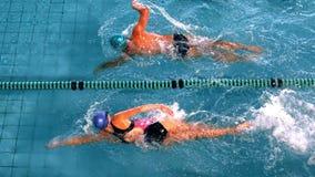 Färdiga simmare som springer i simbassängen stock video