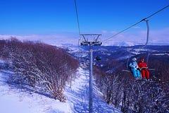 Färg av vintern Arkivfoto