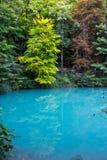 Färg B för sikt för destination Blaubeuren Blautopf för blått vatten turist- Royaltyfri Bild