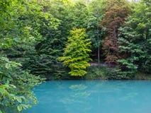 Färg B för sikt för destination Blaubeuren Blautopf för blått vatten turist- Arkivbilder