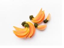 Färg för Palas gulingblomma på vit bakgrund Royaltyfri Fotografi