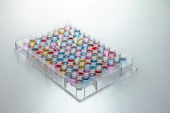 färg fylld microplate samples brunnar royaltyfri bild
