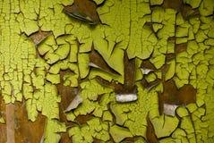 Färg-Peel wood textur Arkivbild