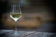 Färga bilden av kylt vitt vin i ett exponeringsglas, med kopieringsutrymme arkivbild