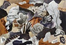 Färga grå färger, bryna och svärta arket för collage för brädet för lynnet för atmosfär för livstil som göras av rivna pappers- r arkivbilder