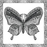 Färga sidan av den tillbaka fjärilen, zentangleillustartion Arkivbild