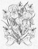 Färga sidan med olika blommor och ett band Royaltyfria Foton