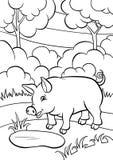 Färga sidor anhydrous gullig liten pig vektor illustrationer
