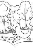 Färga sidor anhydrous Liten gullig känguru royaltyfri illustrationer