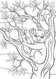 Färga sidor anhydrous Liten gullig koala royaltyfri illustrationer