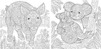 Färga sidor Färgläggningbok för vuxna människor Gulligt svin - 2019 kinesiska symbol för nytt år Färga bilden med koalor Antistre stock illustrationer
