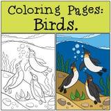 Färga sidor: Fåglar Kram för två liten gullig pingvin vektor illustrationer