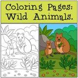 Färga sidor: Vilda djur Moderquokkaen med behandla som ett barn vektor illustrationer