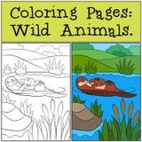 Färga sidor: Vilda djur Små gulliga utterleenden royaltyfri illustrationer