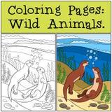 Färga sidor: Vilda djur Två lilla gulliga uttrar simmar stock illustrationer