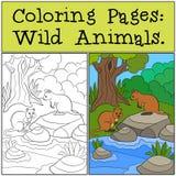 Färga sidor: Vilda djur Två quokkas i skogen stock illustrationer