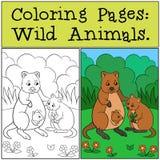 Färga sidor: Vilda djur Två quokkas i skogen royaltyfri illustrationer