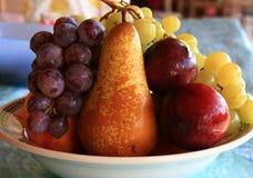 färgad frukt Arkivbilder