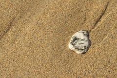 Färgad kiselsten på sanden Arkivfoto