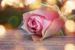 Färgad pastell steg för valentin- eller moderdag Arkivfoto