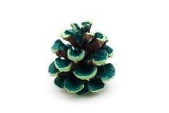 Färgad pinecone Arkivfoton