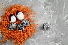 färgade ägg med den svartvita geometriska modellen i ett dekorativt orange rede på en konkret bakgrund royaltyfria foton