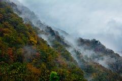 Färgade berg och skogar, moln och mist Royaltyfria Foton