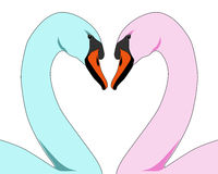 färgade förälskelseswans royaltyfri illustrationer