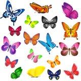 färgade fjärilar Royaltyfria Foton