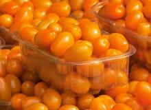 Färgade körsbärsröda tomater för apelsin Arkivfoto