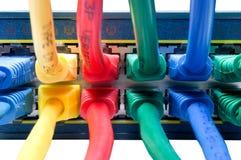 färgade kablar förband Ethernetnavet till Arkivbilder