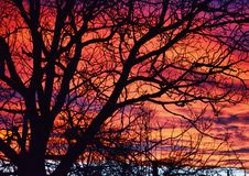 Färgade moln Arkivfoto