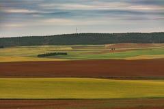 Färgade sädes- fält och kullar fotografering för bildbyråer