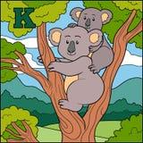 Färgalfabet för barn: bokstav K (koala) Arkivfoton