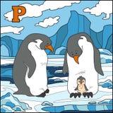 Färgalfabet för barn: bokstav P (pingvin) Royaltyfri Fotografi