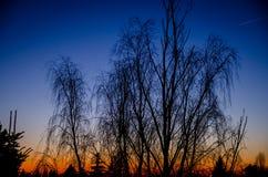 Färgar av solnedgång Royaltyfri Bild
