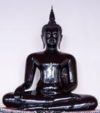 Färgarbete på Buddhastatyn Arkivfoto