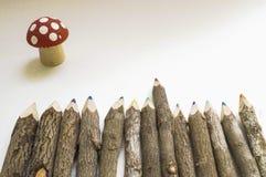Färgblyertspennor från ett träd Arkivfoton