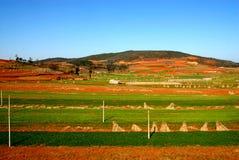 Färgen av land i Yunnan Arkivfoto